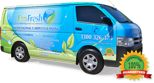 EcoFresh Cleaning